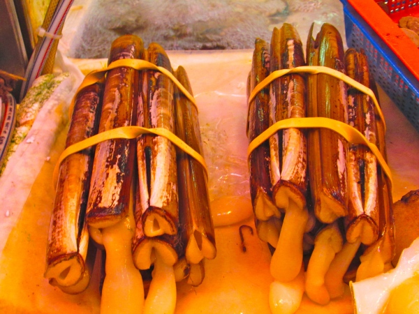 Razor clams are only found in the South China Sea,  Photo by: Diana O'Gilvie